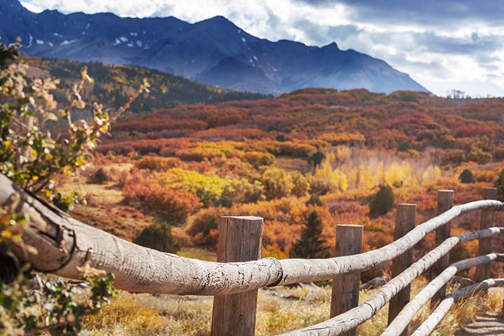 Autumn-in-Colorado-image-by-laurieforgov.com